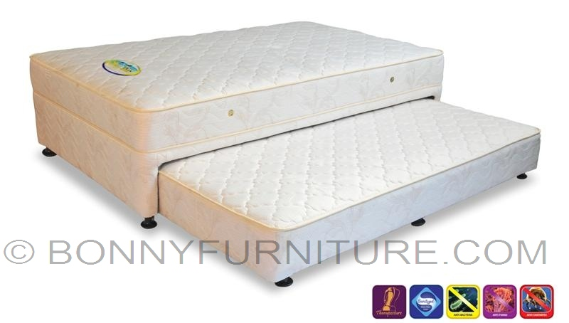 Salem Nite Amp Day Soft Firm Mattress Box With Pull Out